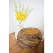 Teak Root Ball Stool/ Display Stand
